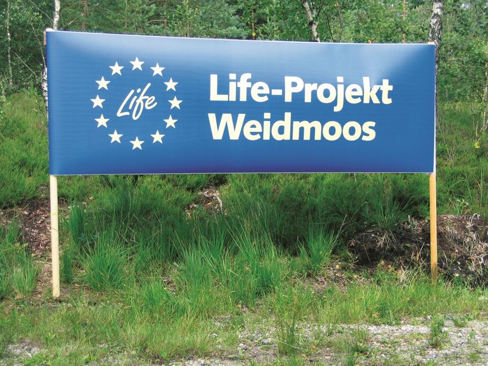 LIFE-Projekt Weidmoos
